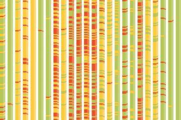Illustration of Genetic Algorithm model